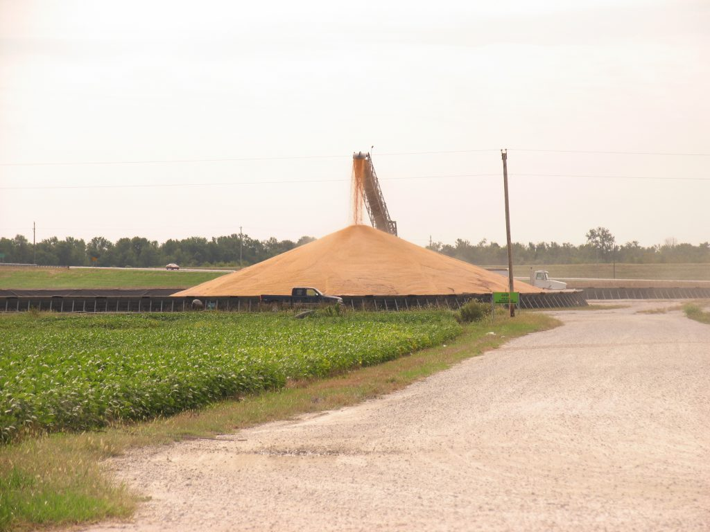 Corn being unloaded into a pile owned by Cargill for temporary storage just outside Beardstown, IL. 2010.