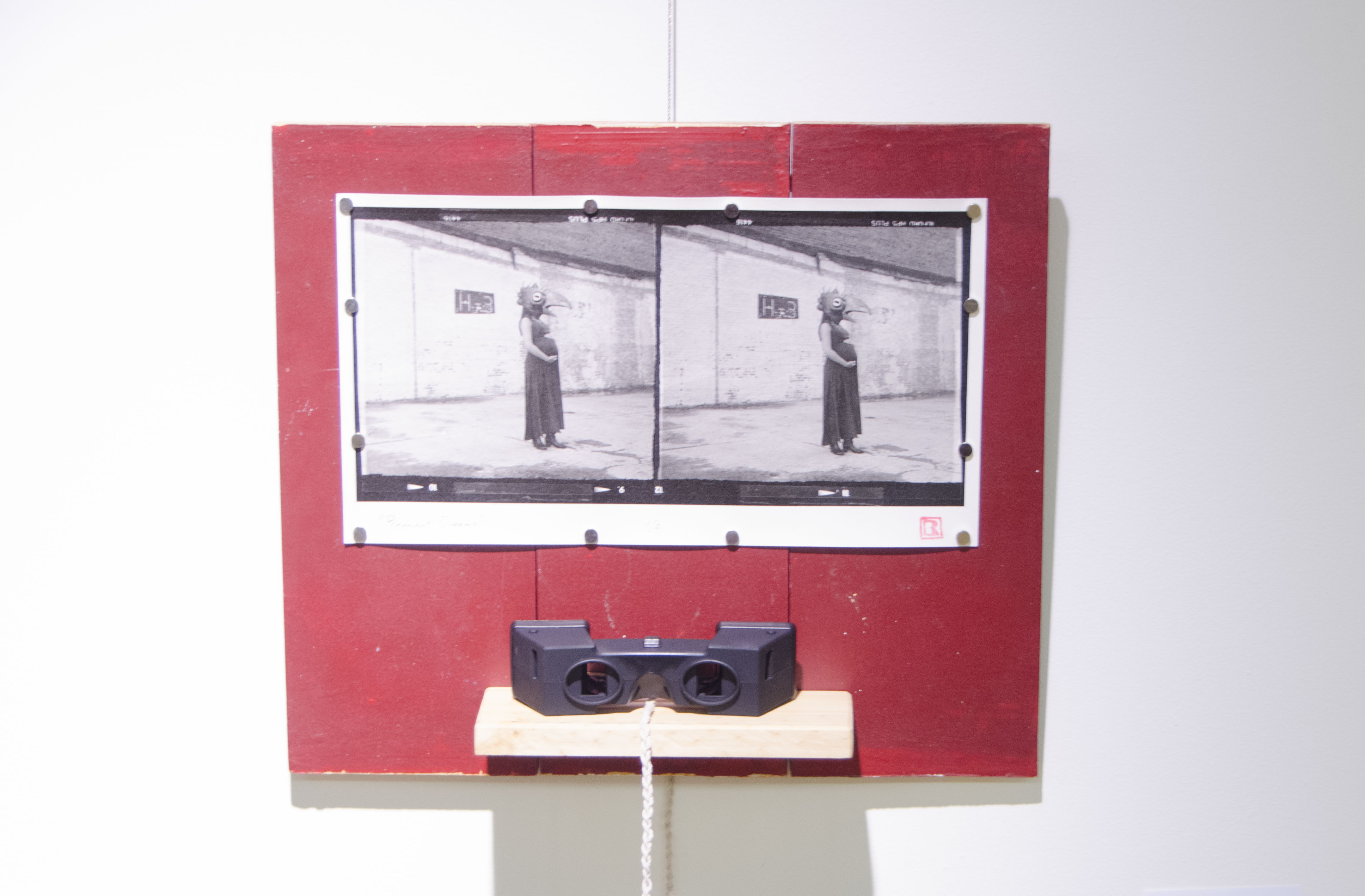 """""""Pregnant Dreams"""" Brian Rowe Photo, wood, and viewer"""
