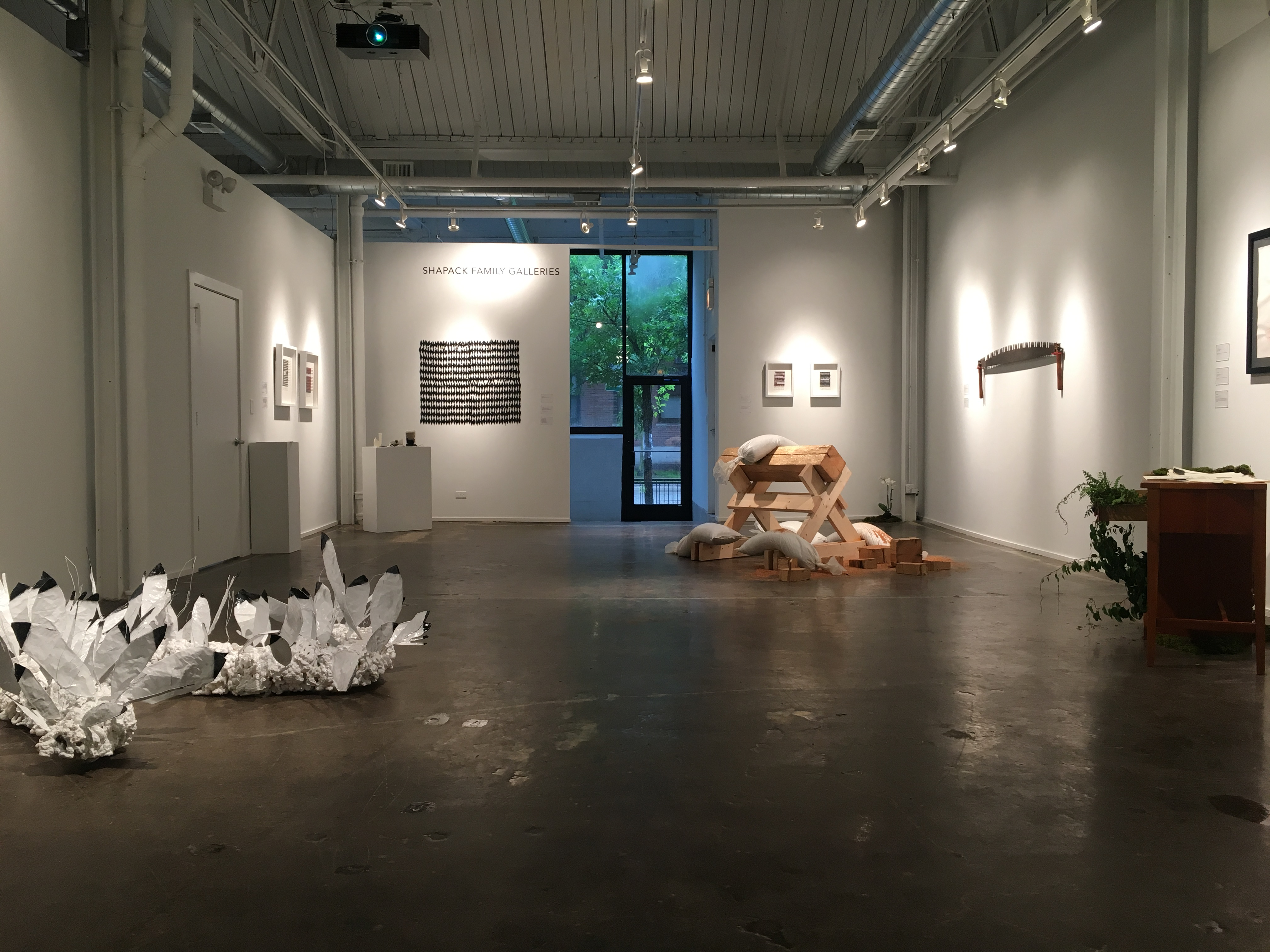 Image: A gallery view of the Shapack Family Galleries. A few pieces or work hang from the white walls as spotlights point in their direction. A few larger pieces are displayed on the concrete gallery floor. Straight ahead, a leafy green tree can be seen outside through the glass door that acts as entrance to the Chicago Artists Coalition building and the gallery space. Photo Courtesy of Chicago Artists Coalition.