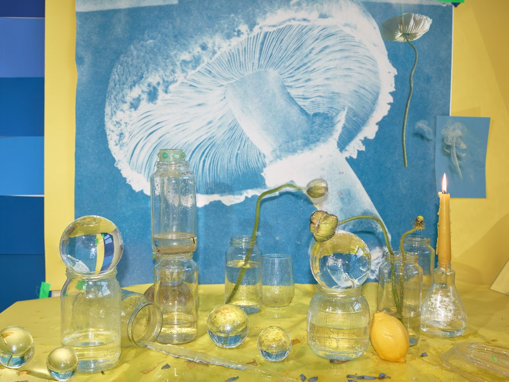 Image: Ice, Water, 2020 by Marzena Abrahamik. A photograph of an arrangement of glass containers carrying water with flowers and lemons. These objects sit in front of a large blue and white image of a mushroom. The composition is dominated by yellow and blue. Image courtesy of the artist.
