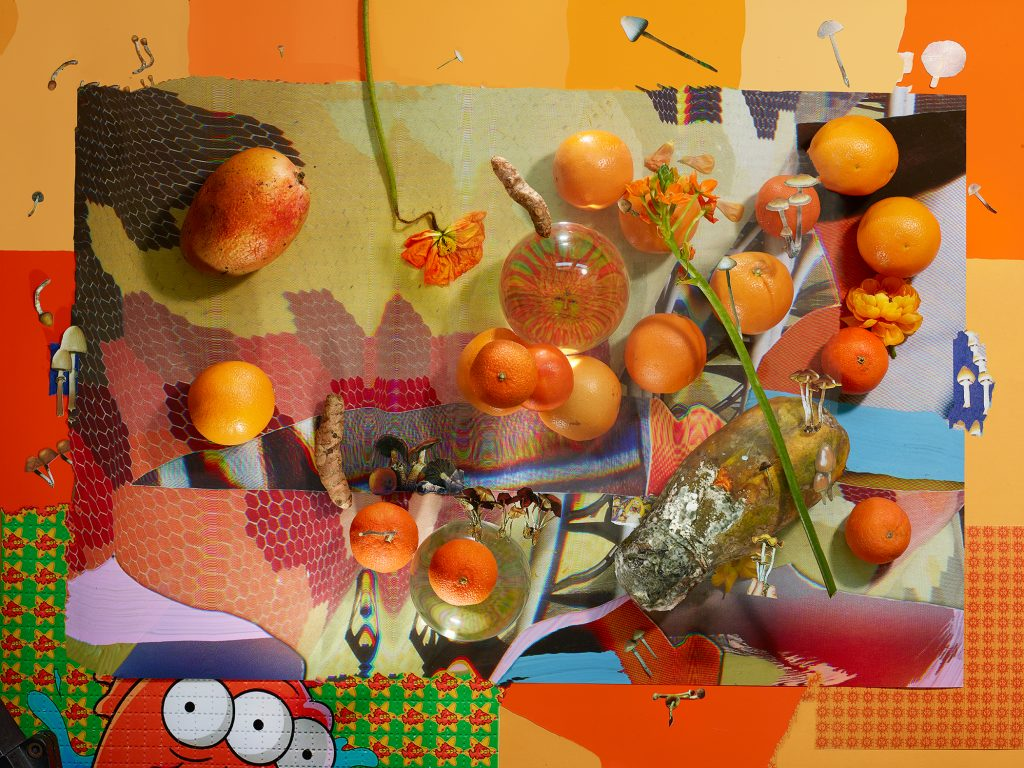 Image: Sisterhood of Eternal Love, 2019 by Marzena Abrahamik. A photograph of an arrangement of flowers and oranges along with a variety of patterns. Most of the composition is orange. Image courtesy of the artist.