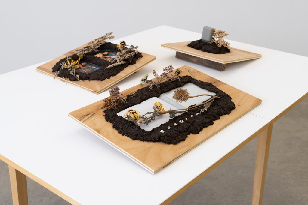 Image: Lilacs, Deadname, and Hidden Cross, 2020 by Cass Davis. Three mixed media pieces in cast soil, flowers and other objects on a wooden panel. The three pieces sit on a white table. Image courtesy of the artist. Photo by Nick Albertson.