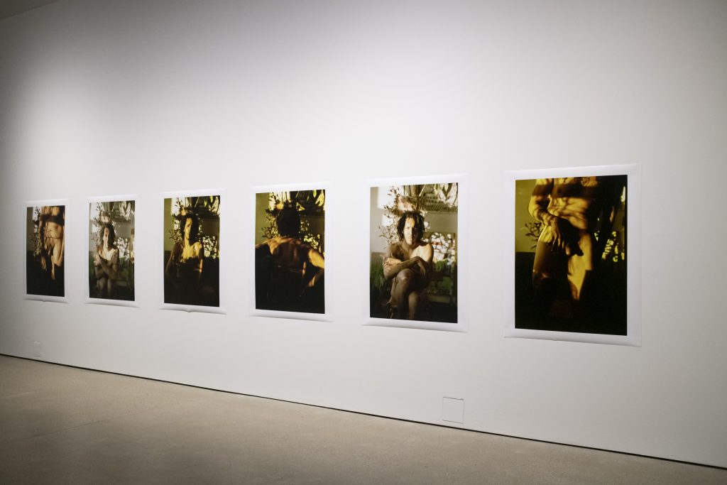 Image: Installation view of when i see me by Benjamin Willis, which is comprised of six photographs of the artist in largely green and yellow tones. Image courtesy of the gallery. Photo by Ty Wright.