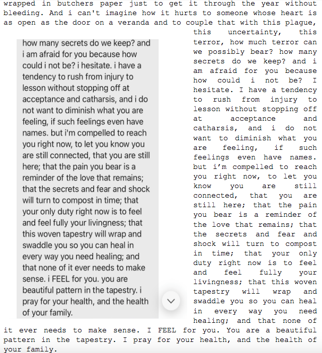 """Image: Text messages between Angel and Dain. Continued from Dain: """"...wrapped in butchers paper just to get it through the year without bleeding. And i can't imagine how it hurts to someone whose heart is as open as the door on a veranda and to couple that with this plague, this uncertainty, this terror, how much terror can can we possibly bear? how many secrets do we keep? and i am afraid  for you because how could i not be? I hesitate. I have a tendency to rush from injury to lesson without stopping off at acceptance and catharsis, and i do not want to diminish what you are feeling, if such feelings even have names. but i'm compelled to reach you right now, to let you know you are still connected, that you are still here; that the pain you bear is a reminder of the love that remains; that the secrets and fear and shock will turn to compost in time; that your only duty right now is to feel and feel fully your livingness; that this woven tapestry will wrap and swaddle you so you can heal in every way you need healing; and that  none of it ever needs to make sense. i FEEL for you. you are a beautiful pattern in the tapestry. i pray for your health, and the health of your family."""""""