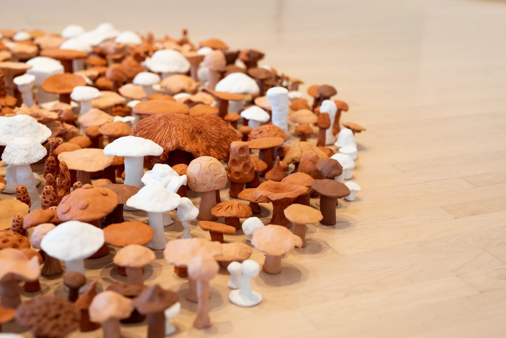 Image: A close up view of Live the Free Fields by Antonio Baluster Moreno as part of Seeds of Resistance at the Eli and Edythe Broad Art Museum at Michigan State University, 2021. The piece consists of small mushroom shapes on the floor of the gallery. Photo: Eat Pomegranate Photography. Image courtesy of the museum.