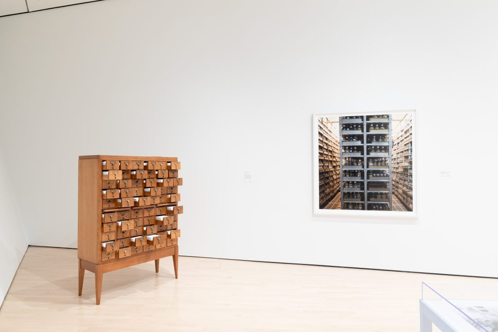 Image: Seeds of Resistance installation view at the Eli and Edythe Broad Art Museum at Michigan State University, 2021. A photograph hangs on the wall to the right of wooden drawers that hold notecards. This piece is titled Encyclopedia by Johannes Heldén and Hokan Jonson. Photo: Eat Pomegranate Photography. Image courtesy of the museum.
