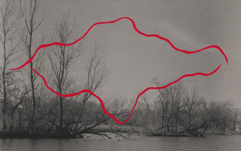A black and white photograph of trees with no leaves alongside a lagoon of water. There are two cut out lines colored red moving across the image. Image by Ryan Edmund Thiel.