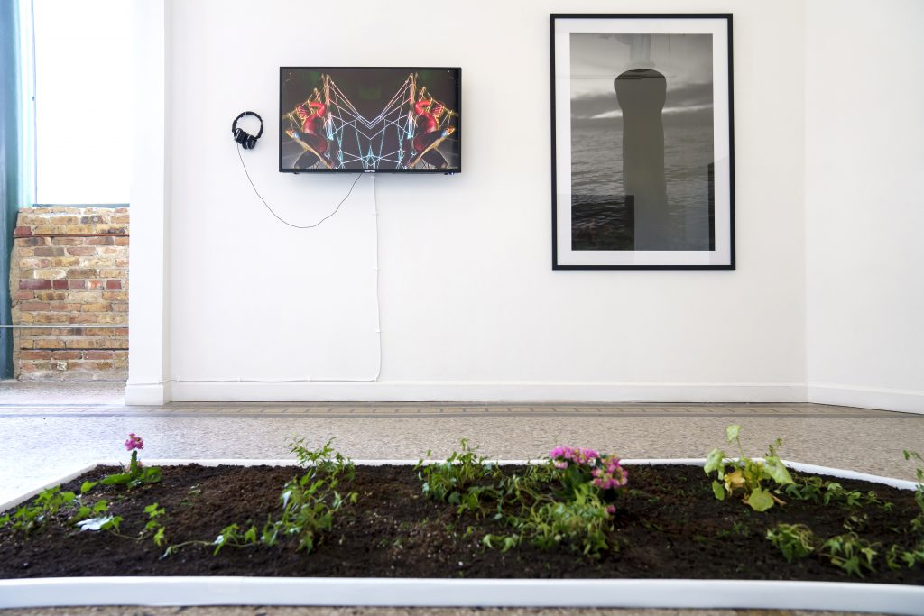 """Image: A view of """"Dreamscapes: Imaginings of a Black Pastoral"""" at Roots and Culture. On the wall are two pieces on display: on the left is a video piece and on the right is a framed black and white photo. A rectangle plot of soil and flowers sits on the floor. Photo by Colectivo Multipolar."""