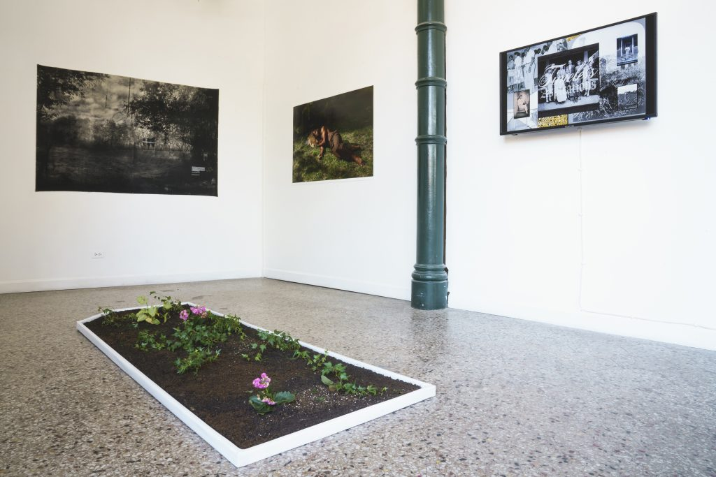 """Image: A view of """"Dreamscapes: Imaginings of a Black Pastoral"""" at Roots and Culture. On the wall are three pieces on display: on the left is a black and white landscape, the middle image is a photographic portrait of a person laying nude in the grass, and on the right is a piece that includes multiple photographs elements. A rectangle plot of soil and flowers sits on the floor. Photo by Colectivo Multipolar."""