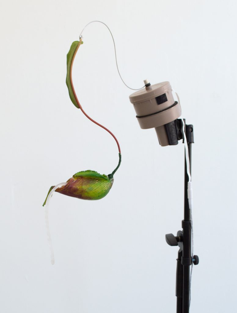 """Image: Rachel Youn, """"Vicious Glue,"""" 2021. Artificial nepenthes, decoy motor, microphone stand, silicone, 56"""" x 26"""" x 18"""". A close up view of the sculpture, showing the top of a microphone stand with a decoy motor and leaf at the top. Image courtesy of LVL3."""