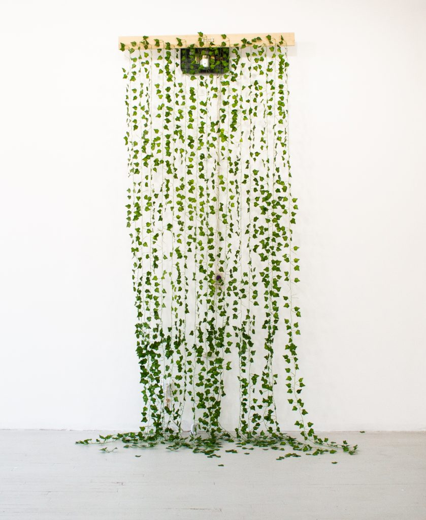 """Image: Rachel Youn, """"Lair,"""" 2021. Artificial ivy, massager, wood, 110"""" x 76"""" x 28"""". Artificial ivy hangs from a piece of wood and cascades onto the floor. Image courtesy of LVL3."""