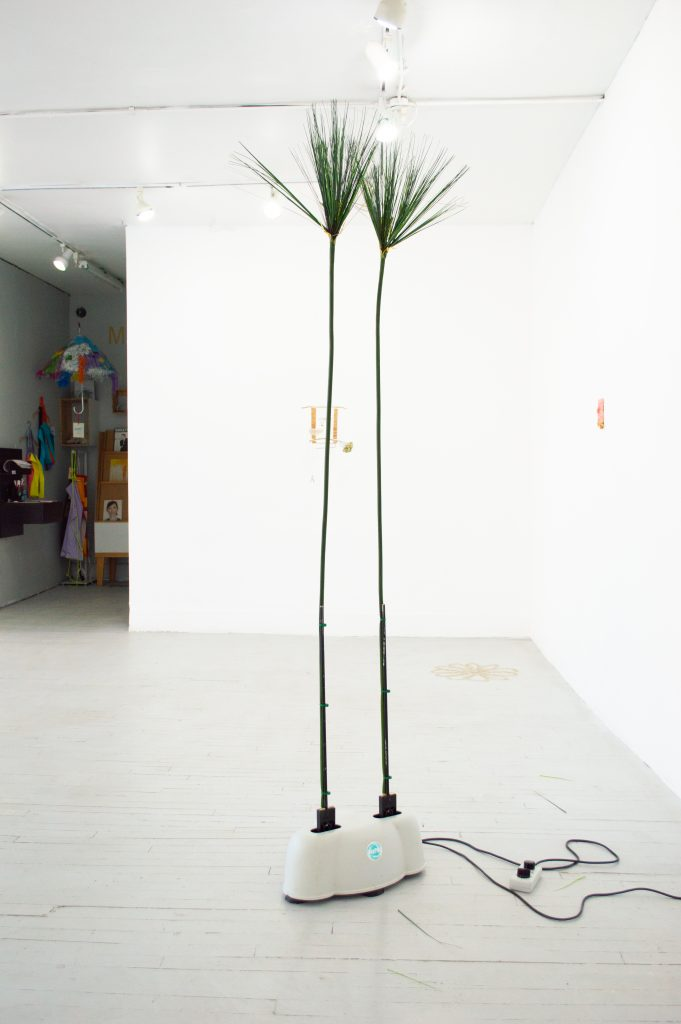 """Image: Rachel Youn, """"Temptress,"""" 2021. Artificial papyrus and massager, 80"""" x 17"""" x 12"""". A massager lies on the floor of the gallery with two artificial papyrus leaves coming up from the device and stretch towards the ceiling. Image courtesy of LVL3."""